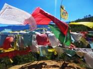 Himalayas (220)