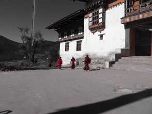 Himalayas (569)